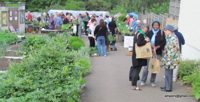 Gordon Road allotment sale