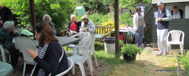 Allotment cafe