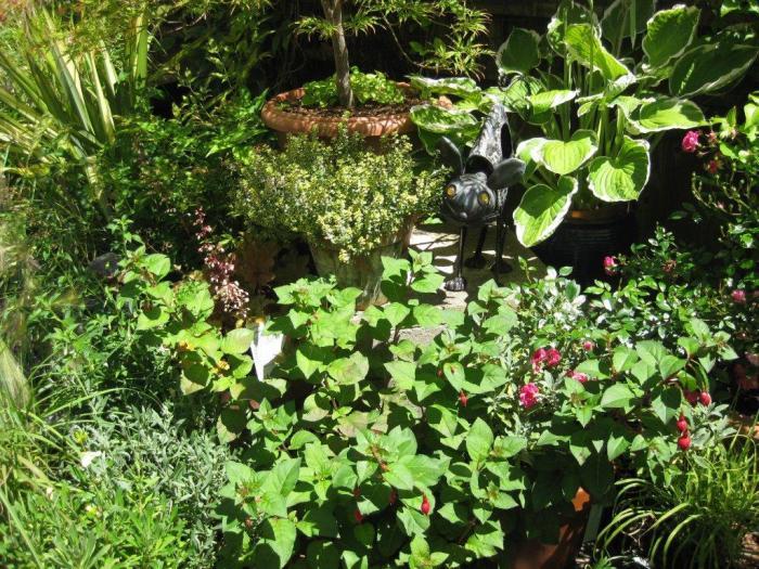 Garden in Park Crescent