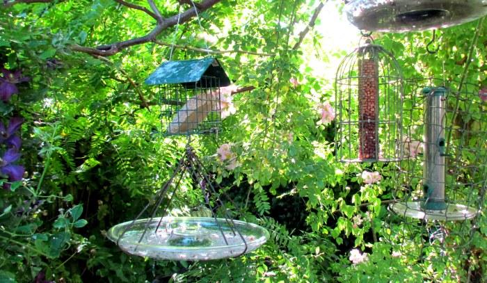 NGS Garden